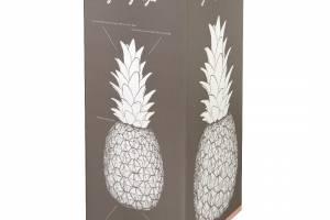 Packaging-Pineapple