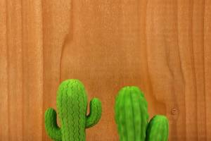 ER56_CACTUS_ERASERS_ACTION_0016_14