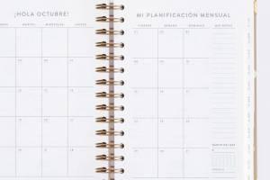 agenda-diaria-21-22-latte-mediana-chubby (7)